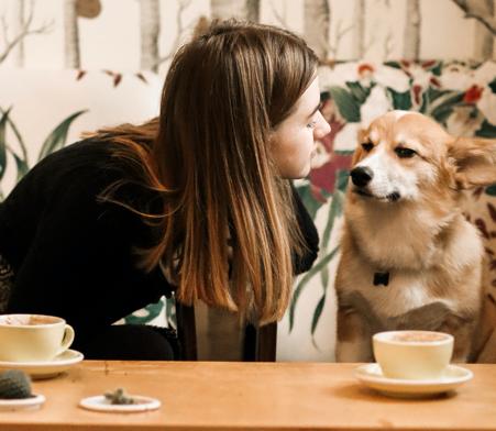 Lugares dog friendly en ronda